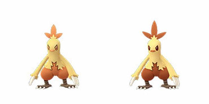アチャモ 進化