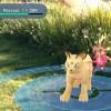 ポケモンGO、バトル画面など公開。タマゴをかえすには実際に決められた距離を歩く必要も