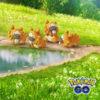 ポケモンGO、ビッパ祭りが開催される。炎上中の日本は行わず